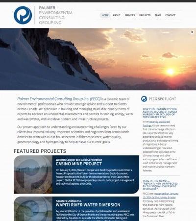 Palmer Environmental Consulting Group